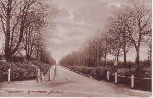 Crowthorne, Broadmoor Avenue