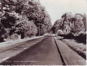 Dukes Ride, Crowthorne